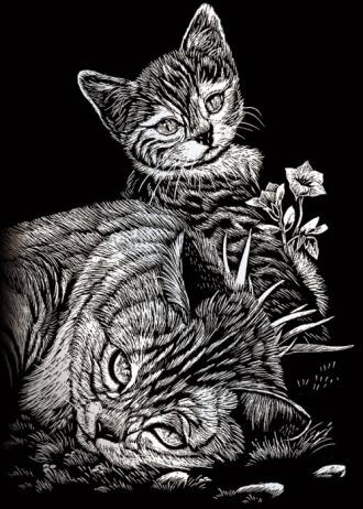Čierny péro n mačička